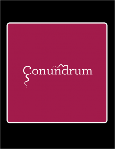 Conundrum Outdoor Sign